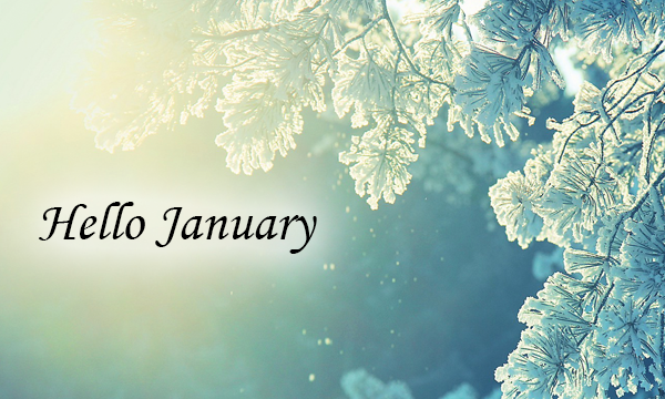January 2020 Wrap-Up