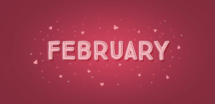 Monthly Wrap-Up: February 2020